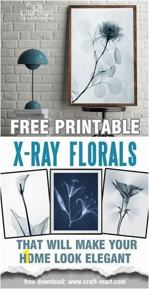 "Free printable wall art X ray florals and ""Aura"" photos These are just perfect for any interior Use them as free farmhouse printables or create a"