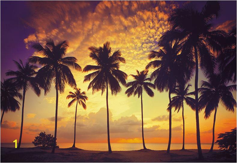 Scarface Palm Tree Wallpaper Wel e to murals4u 790x542