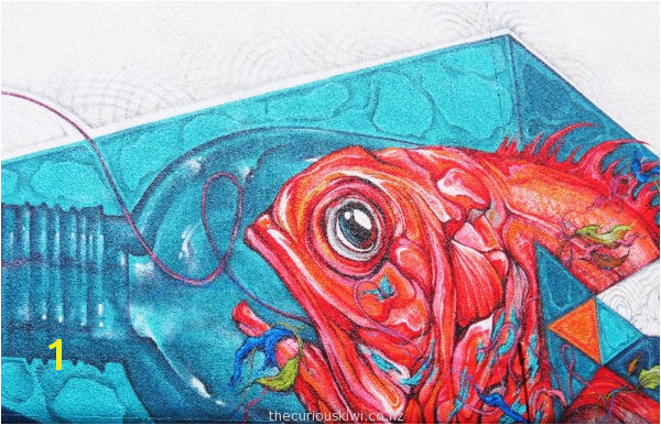 Sea Walls Murals for Oceans Napier Street Art