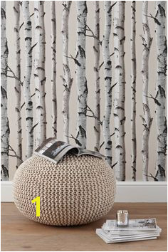 Birch trees wallpaper would like this for the chimney breast Tree Wallpaper Living Room