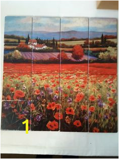 Poppy pastures l tile mural on porcelain tiles at £256