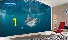 Underwater Wall Murals Uk 177 Best Underwater Wallpaper Images