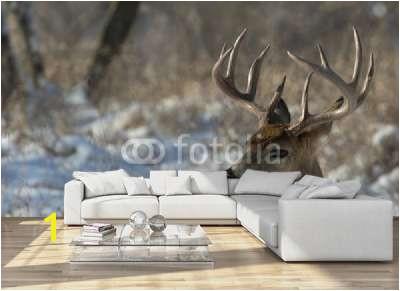 Big Deer Wall mural