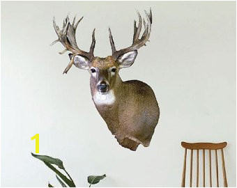 Whitetail Deer Wall Murals Deer Wall Decor