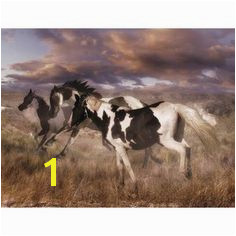 Brewster Home Fashions Ultimate Wild Horses Wall Mural Wall Murals Removable Wall Murals