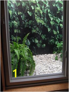 "Do you have a steel basement window well with no view Spruce it up with a window well picture I love my ""green"" window view"
