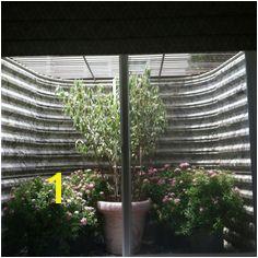 basement window well plants Egress Window Cover Basement Window Well Basement Window Treatments
