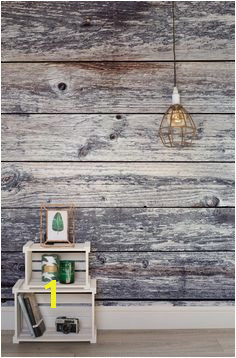 Aged Grey Planks Wall Mural