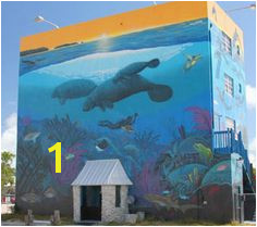 Wyland came and painted our building in Key Largo fabulous Graffiti Murals