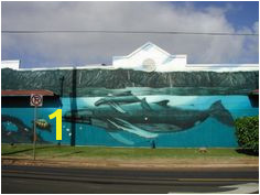 Wyland Murals 23 Best Wyland Whale Walls Images