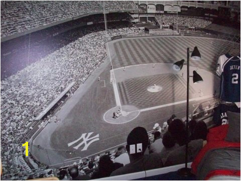 Yankee Stadium Wall Mural Part 4