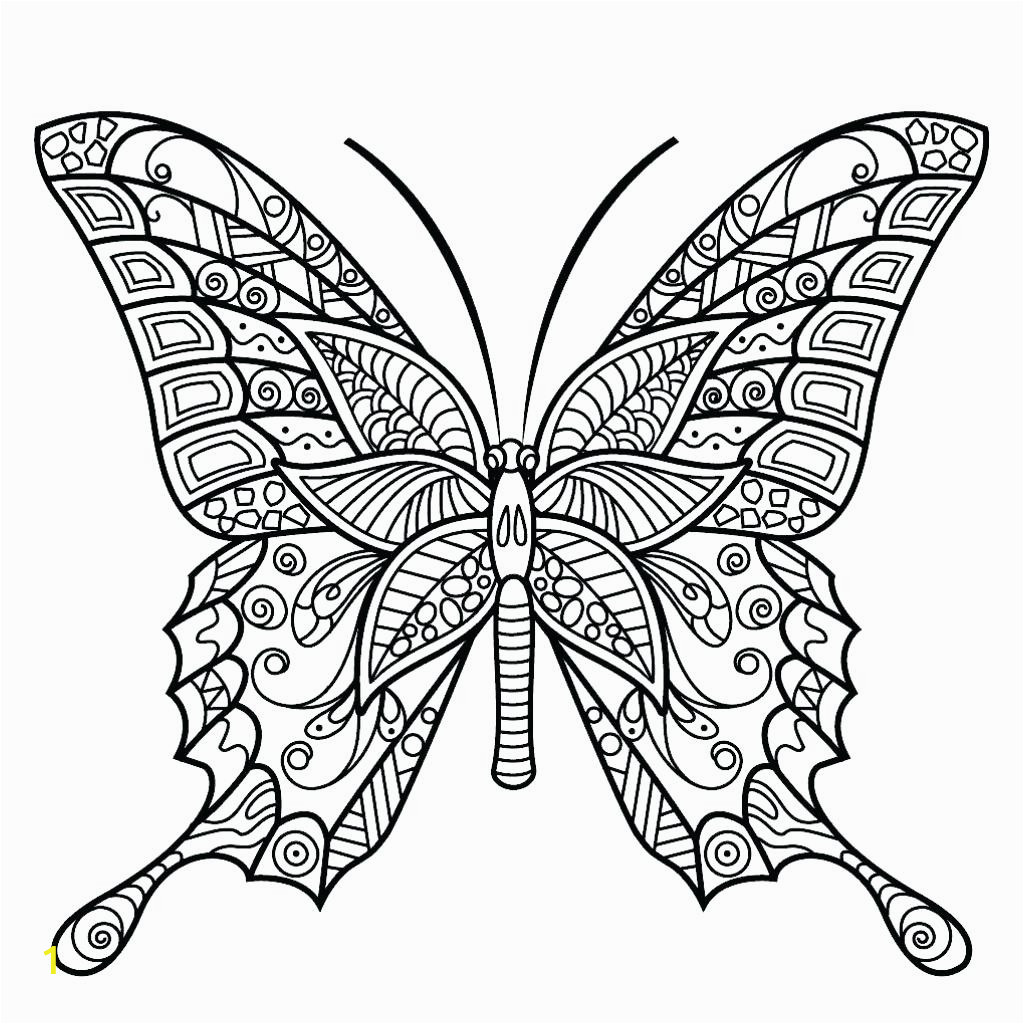 free butterfly coloringages for adults torintrintable caterpillaratterns