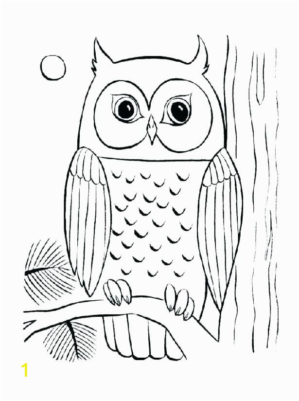 a5eda7dcb2df8ec1aa eef6ad colored pictures of owls cute owl coloring pages to print baby owl 615 824