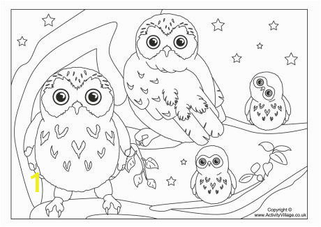 5aca7395b1edbf0c0c4ee9b8bc0b5b9c colouring pages owls popular trend coloring pages mvngcstl 460 325