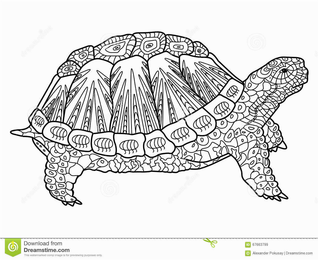 turtle coloring book adults vector illustration anti stress adult zentangle style black white lines lace