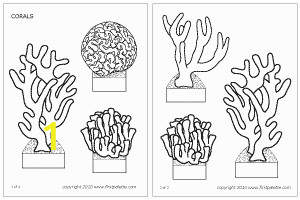 Barrier Reef Coloring Pages Corals Template