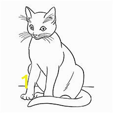 0dff f8914ebdce838f155da8ee2 colouring in coloring pages