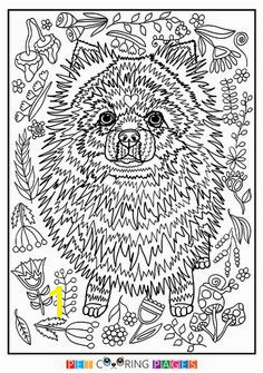 fae98ef4612a13fc60e593e6e6cebf9b coloring sheets coloring books