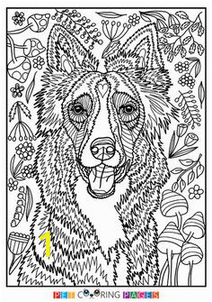 368b8ef52b2a260f65a6d5444f95fdc5 free coloring coloring books