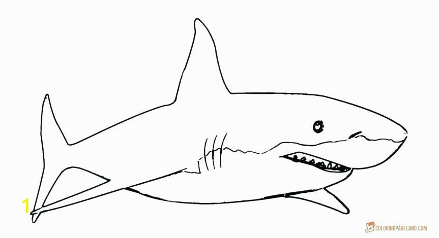 d8d bedf299a70ef d2 printable great white shark coloring pages happysalesinfo 863 469