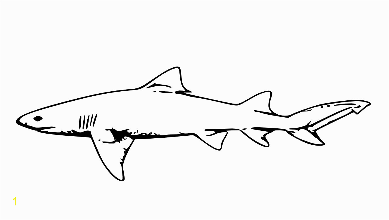 460f8be0cb22ee175c631b29eef61b46 free printable shark coloring pages for kids 1331 754