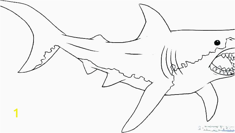 new coloring pages shark to print of coloring pages shark to print