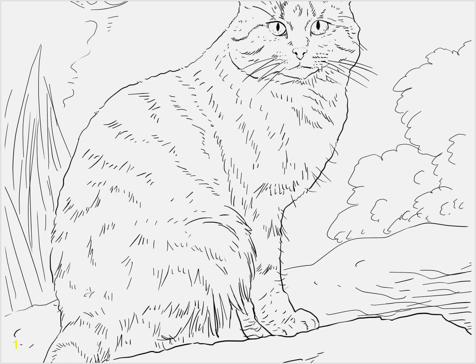 pushing the cat printable coloring pages