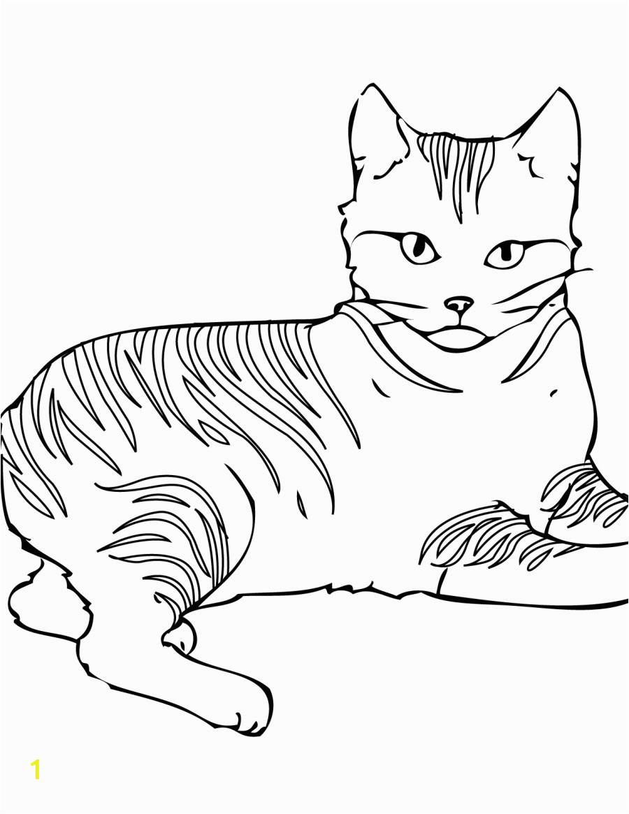 warrior cats drawing 30