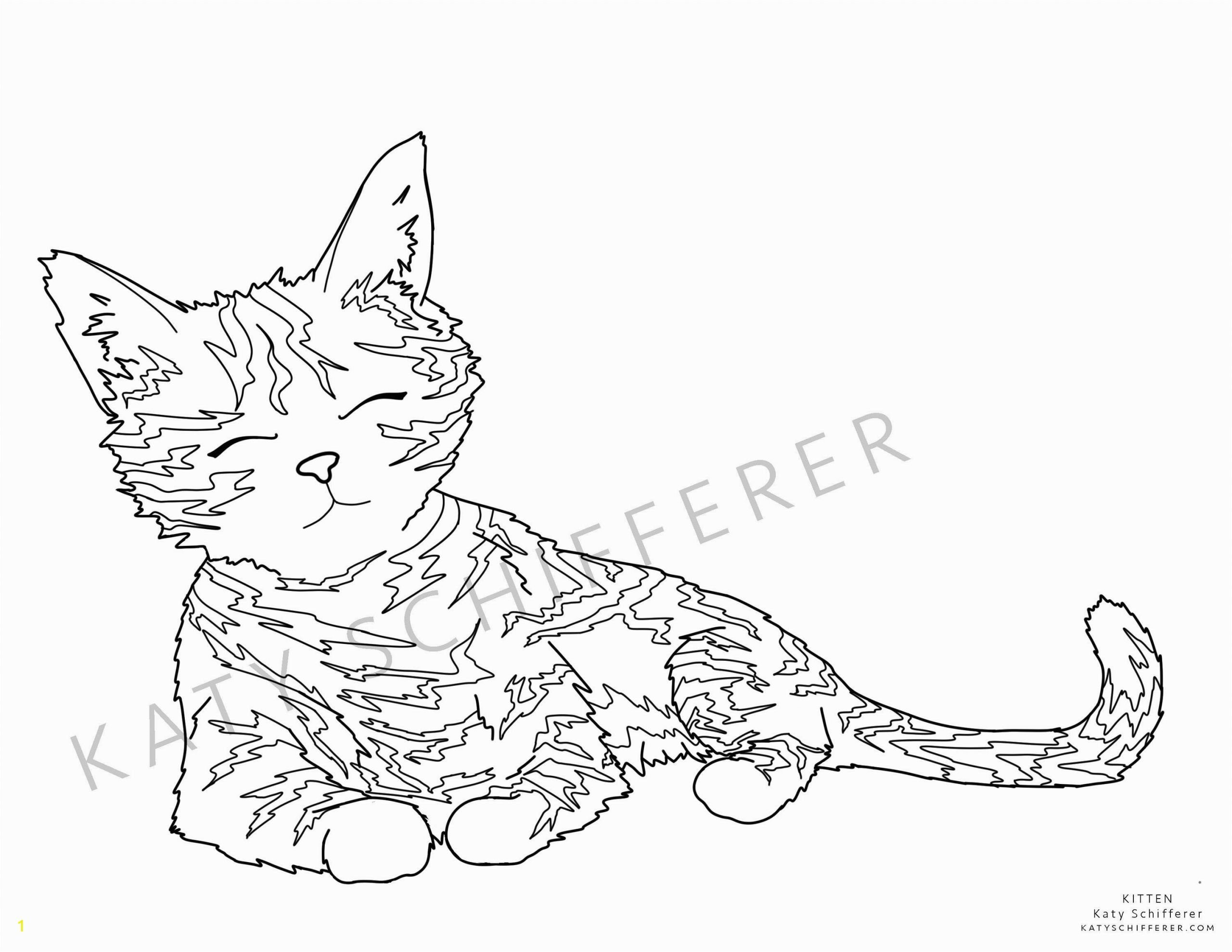 real cat and kitten coloringes printable images of cats sabadaphnecottage warrior best tremendous cute image for sheets extraordinary