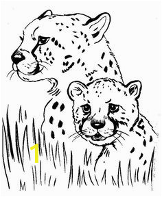 474b7779e3b8982e74d8b be8e coloring pages to print animal coloring pages