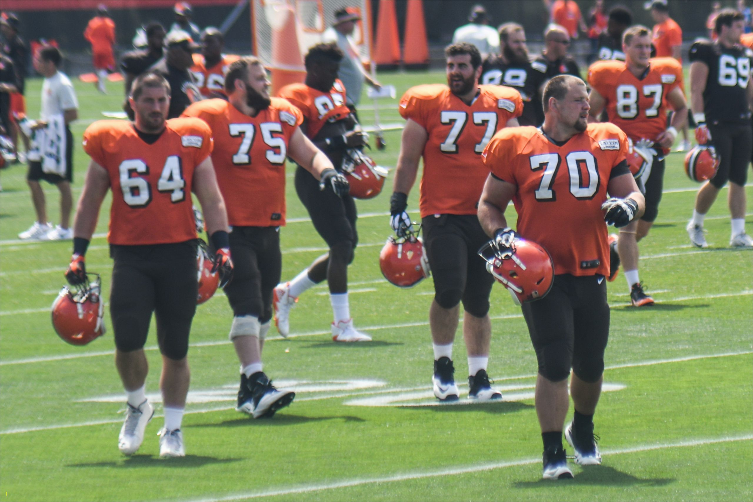 Cleveland Browns Training Camp %