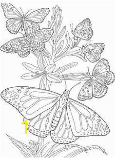 5a6ac45c0dc8a6b beb0dde printable adult coloring pages coloring pages for adults