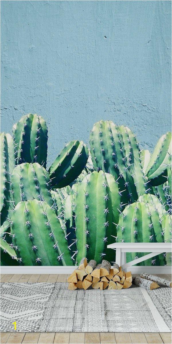 Desert Scene Wall Mural Cactus and Teal Wall Mural Wallpaper Nature