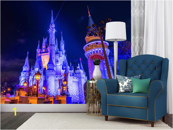 Nighttime Cinderella s Castle yph1ub