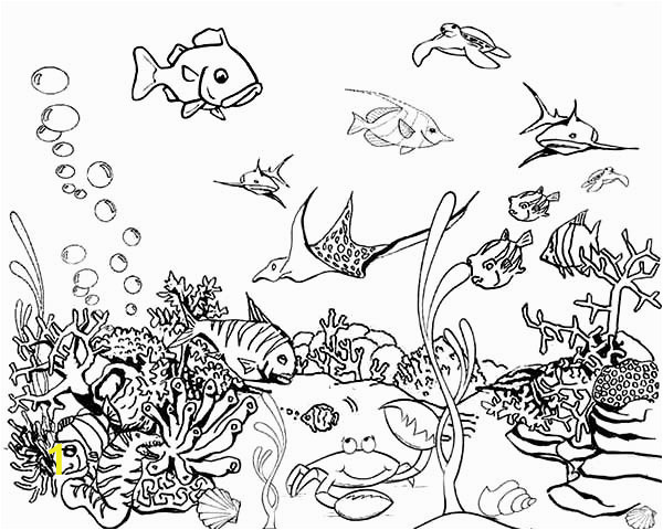 41c284e2d55f9d46b90f9e652ab87e55 hawaiian fish coloring pages tropical fish tank coloring page 600 480