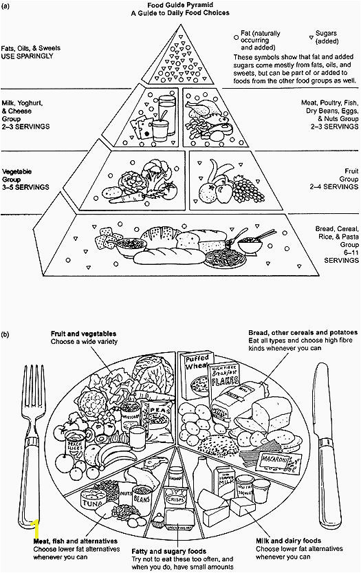 best of coloring pages noodles for adults