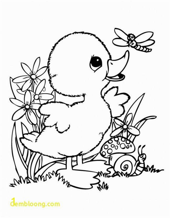 unique coloring pages bird pdf of coloring pages bird pdf