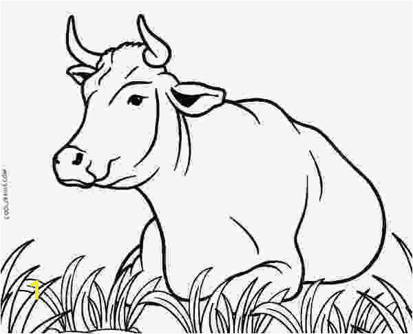 Free Printable Cow Coloring Pages Cow Coloring Sheets Free Printable Cow Coloring Pages for