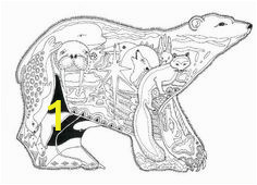 bf53a0969c7de0cdde76c153eb77d608 coloring pages for adults black bear