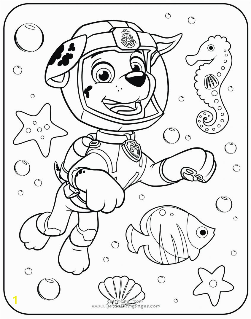 phenomenal picture to coloring page photo ideas from paw patrol org skye pages lassosheet co marshall colouring chase printable sheet