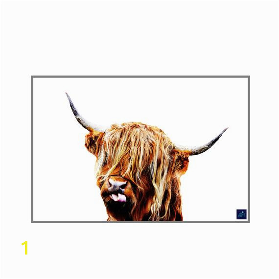 Highland Cow Coloring Page Cow Print Highland Cow Printable Wall Art Shaggy Cow Colorul Digital Download Highland Funny Cow Print Shaggy Cow Rustic Poster