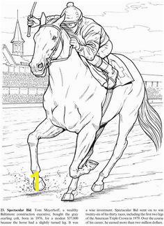 f b1ff1af3b1fda b9700 race horses dover publications