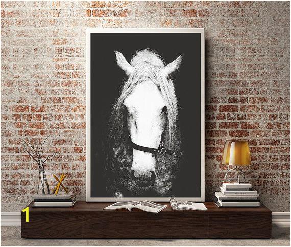 Horse Wall Decals Murals Black & White Horse Graphy Horse Wall Decor Horse Wall