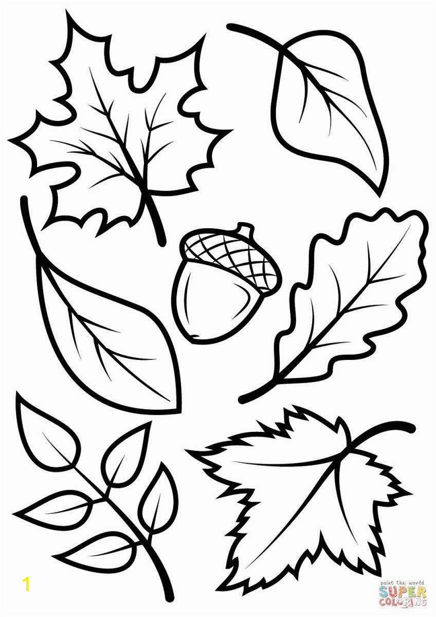 Kindergarten Fall Coloring Pages Fall Coloring Pages for Kids Fall Leaves and Acorn Coloring