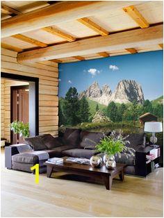 79f ee80fe1cf0d331f3beef2454 photo mural wallpaper designs
