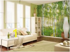 7b819f1732efc5d10d c1f8bb05 birch forest tree forest