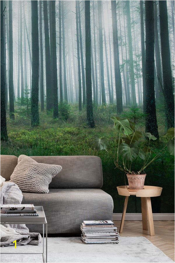 Lake In the Woods Wall Mural Lake In forest Wall Mural Wallpaper Landscapes