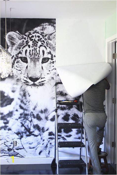 Leopard Print Wall Mural Snow Leopard Wallpaper Mural Diy