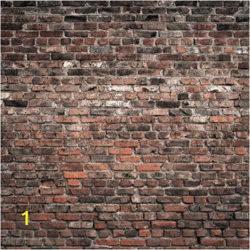Old Brick Wall Murals Brick House