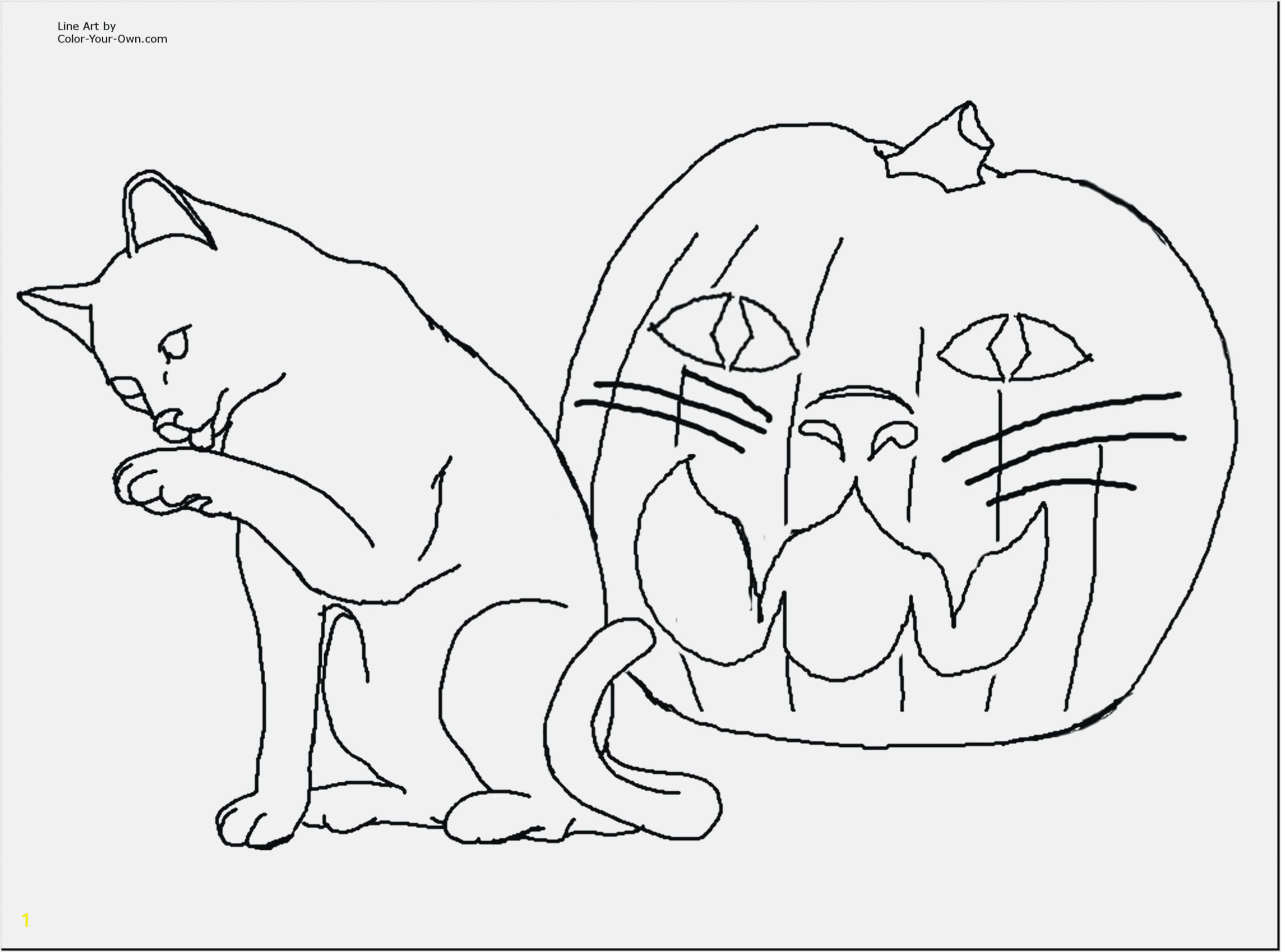 print coloring pages kitten scaled